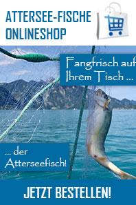 Fangfrische Atterseefische!